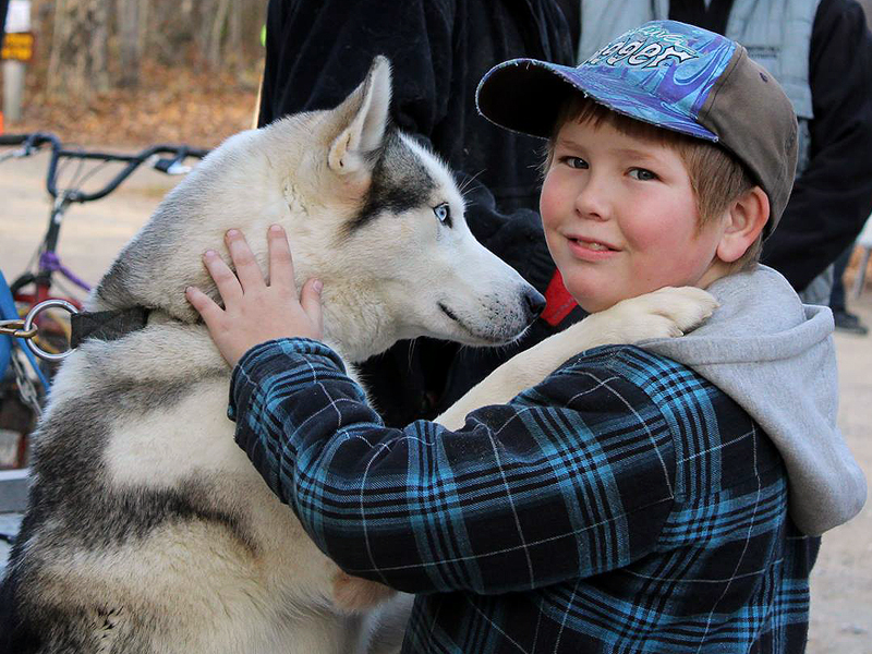 SSASO MacGregor Point Dryland Sled Dog Derby Race - meet the teams