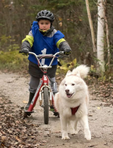 Kid and Mutt race