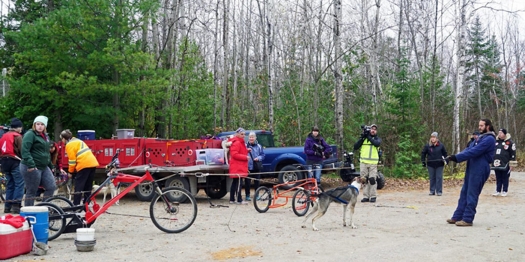 Mushers prepare for the SSASO MacGregor Point Dryland Sled Dog Derby