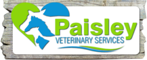 Paisley Veterinary Services