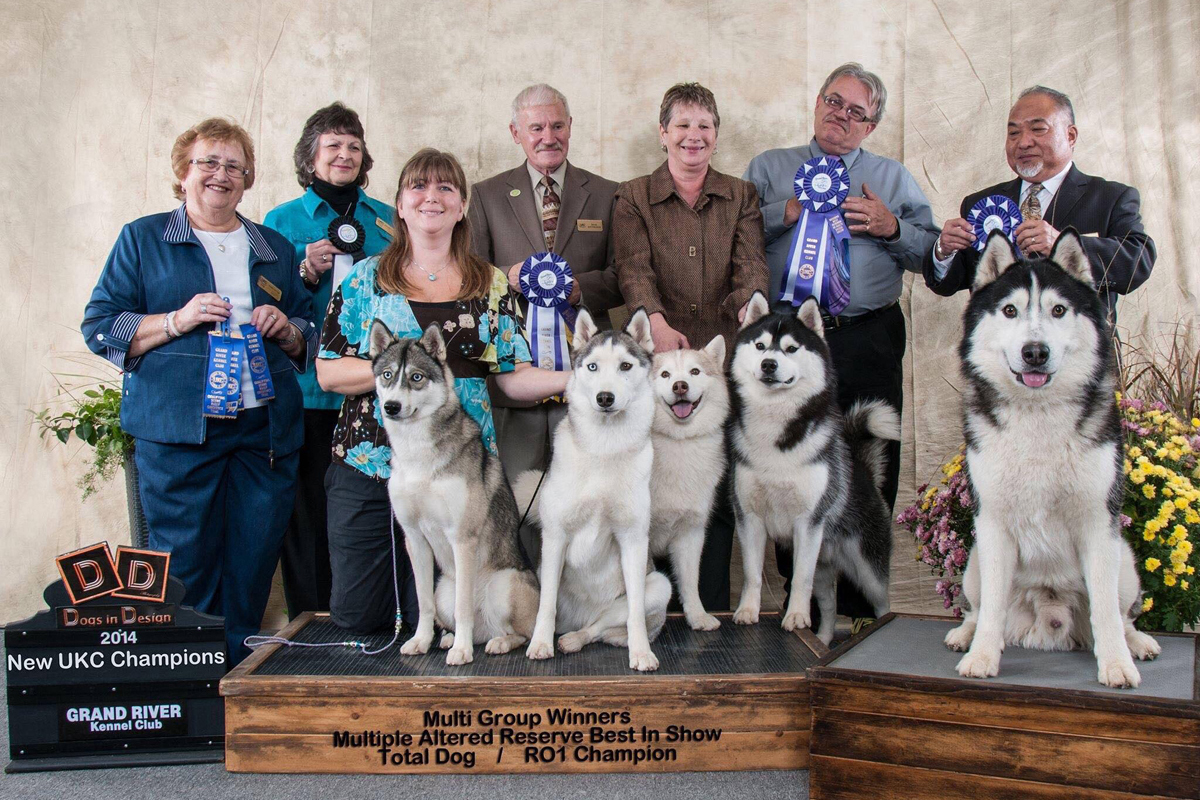 UKC Grand River Kennel Club Siberian Husky Breed Booster dog show